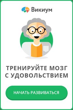 Wikium - тренажеры для мозга